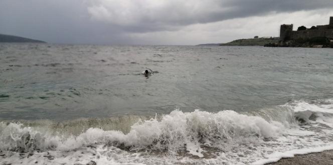 Suda çırpınan martı için soğuk havada denize atladılar
