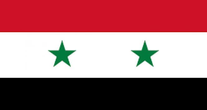 Suriye İnsan Hakları Ağı: