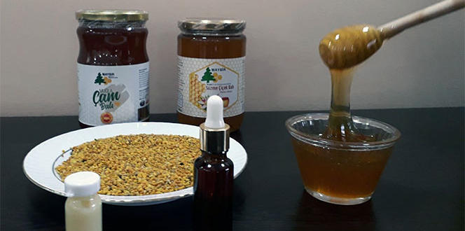 Arı ürünlerine ilgi arttı