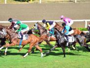 At yarışları ertelendi